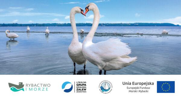 Zakochaj się w Jeziorze Zegrzyńskim